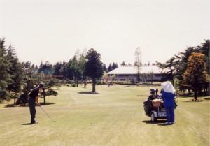 袖ヶ浦カンツリークラブ・袖ヶ浦コース 18番ホール第2打地点から… 中央杉の左がサブ・グリーン、右が大競技で使うメイングリーン(キャディの向う)