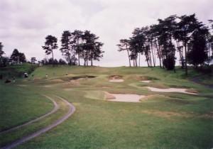 ニュー・セントアンドリュース ゴルフクラブ・ジャパン 2番ホール