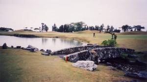 パームヒルズゴルフリゾートクラブ 池、クリークと水際の多いグリーンまわり